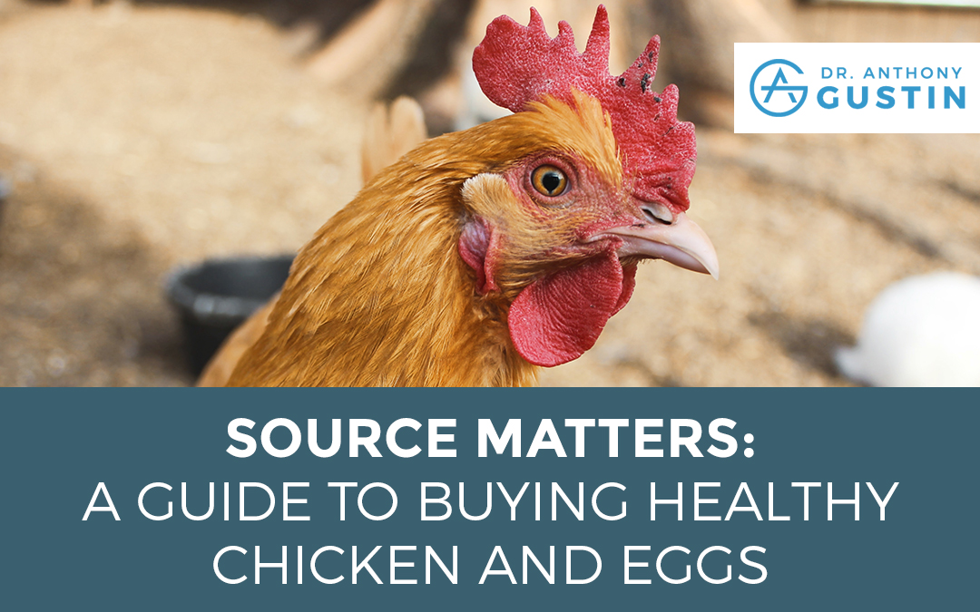 Source Matters: A Guide to Buying Healthy Chicken and Eggs
