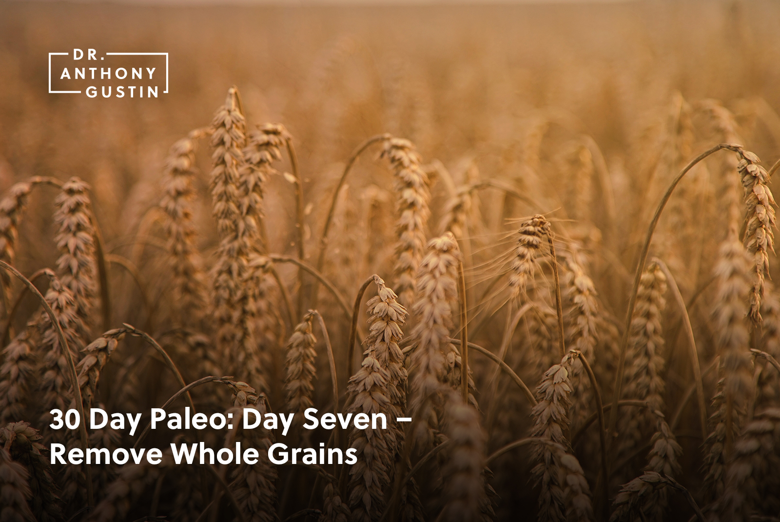 30 Day Paleo: Day Seven – Remove Whole Grains